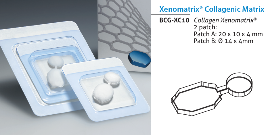 Bioteck Xenomatrix Collagenic Matrix